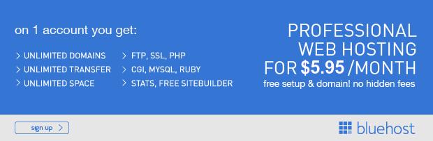 Bluehost : Honest web hosting reviews of 2016