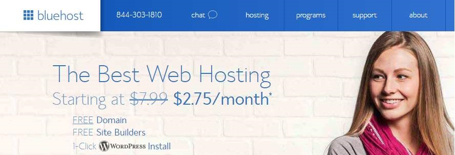 Bluehost vs hostgator : Bluehost review