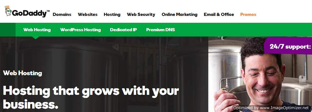 Godaddy home page image